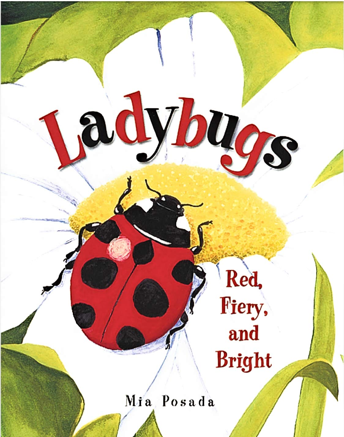 Ladybugs: Red, Fiery, and Bright: Mia Posada: