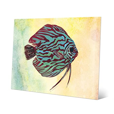 Amazon.com: Turquoise Discus Stripes: Tropical Fish Illustration on ...