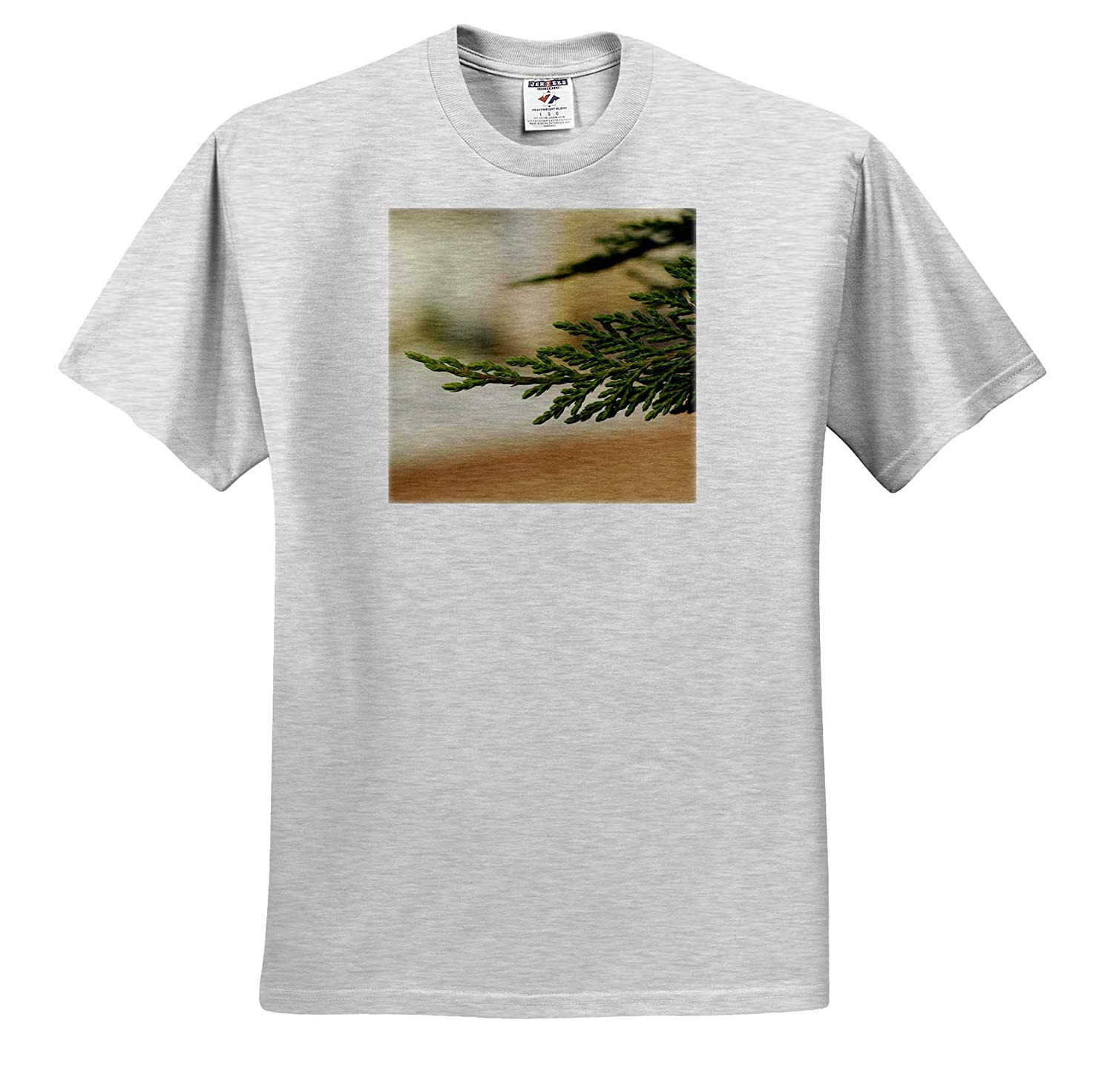 Plants - Adult T-Shirt XL Macro Photograph of The Foliage of a Leyland Cypress 3dRose Stamp City ts/_320126