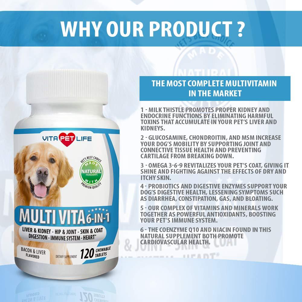 Amazon.com: Multivitamina 6 en 1 para perros, cardo de leche ...