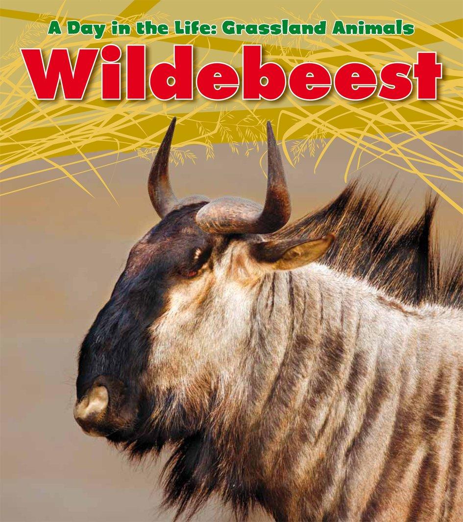 Download Wildebeest (A Day in the Life: Grassland Animals) pdf