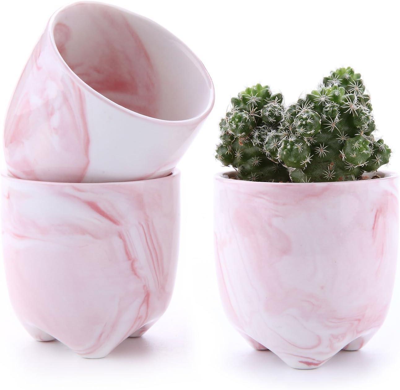 New Mini Small Ceramic Succulent Plant Pot Flower Planter Holder Cactus 2.25 In