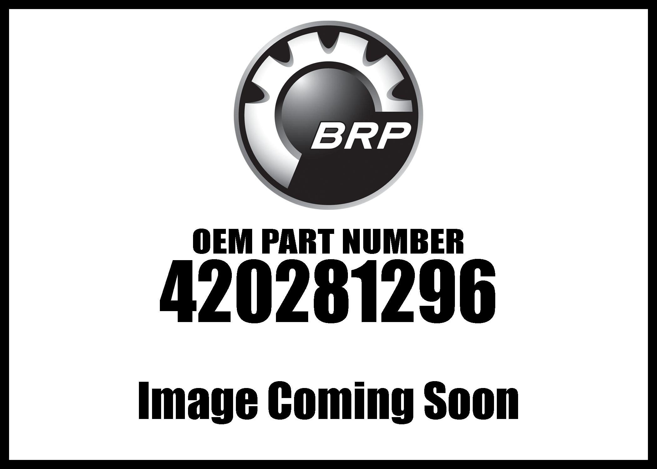 Can-Am Slider Shoe Set 1 Set= 12Pc 420281296 New OEM