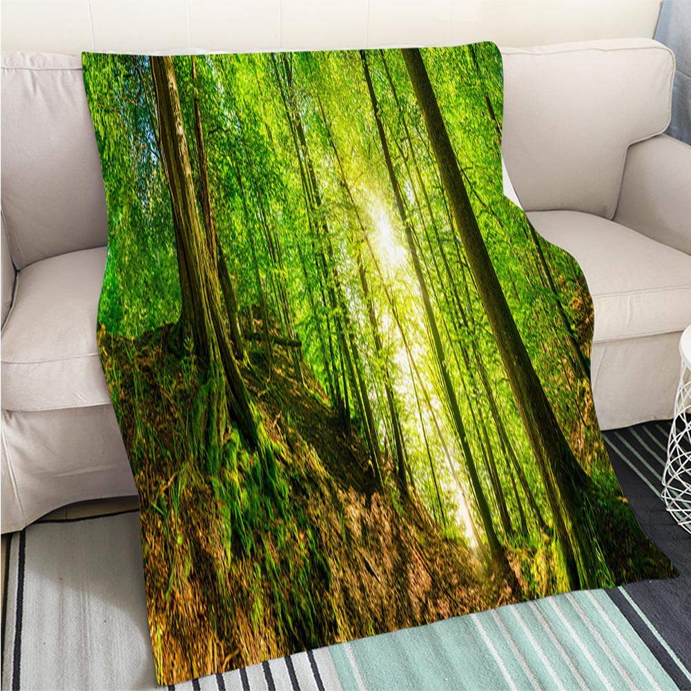 Astounding Amazon Com Beicici Super Soft Throw Thicken Blanket Forest Home Remodeling Inspirations Cosmcuboardxyz
