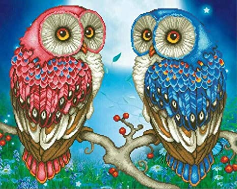 Amazon Com 5d Diy Diamond Painting Kit Lprtalk 5d Diamond Art Kit Full Square Drill For Adults Or Kids Embroidery Pictures Arts Craft Mosaic Making Cross Stitch For Home Wall Decor Owl Couple