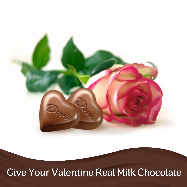 Amazon.com : DOVE Valentine's Milk Chocolate Truffles Heart Gift ...