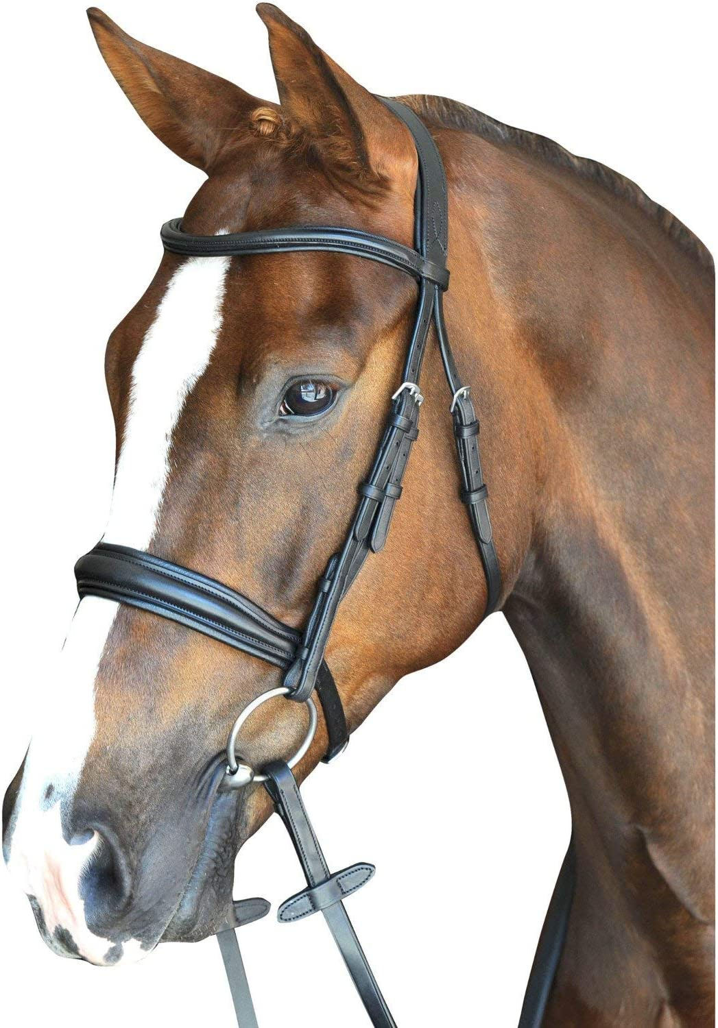 Collegiate Monoクラウンパッド入りRaised Cavesson Snaffle Bridle Warmbloodブラック
