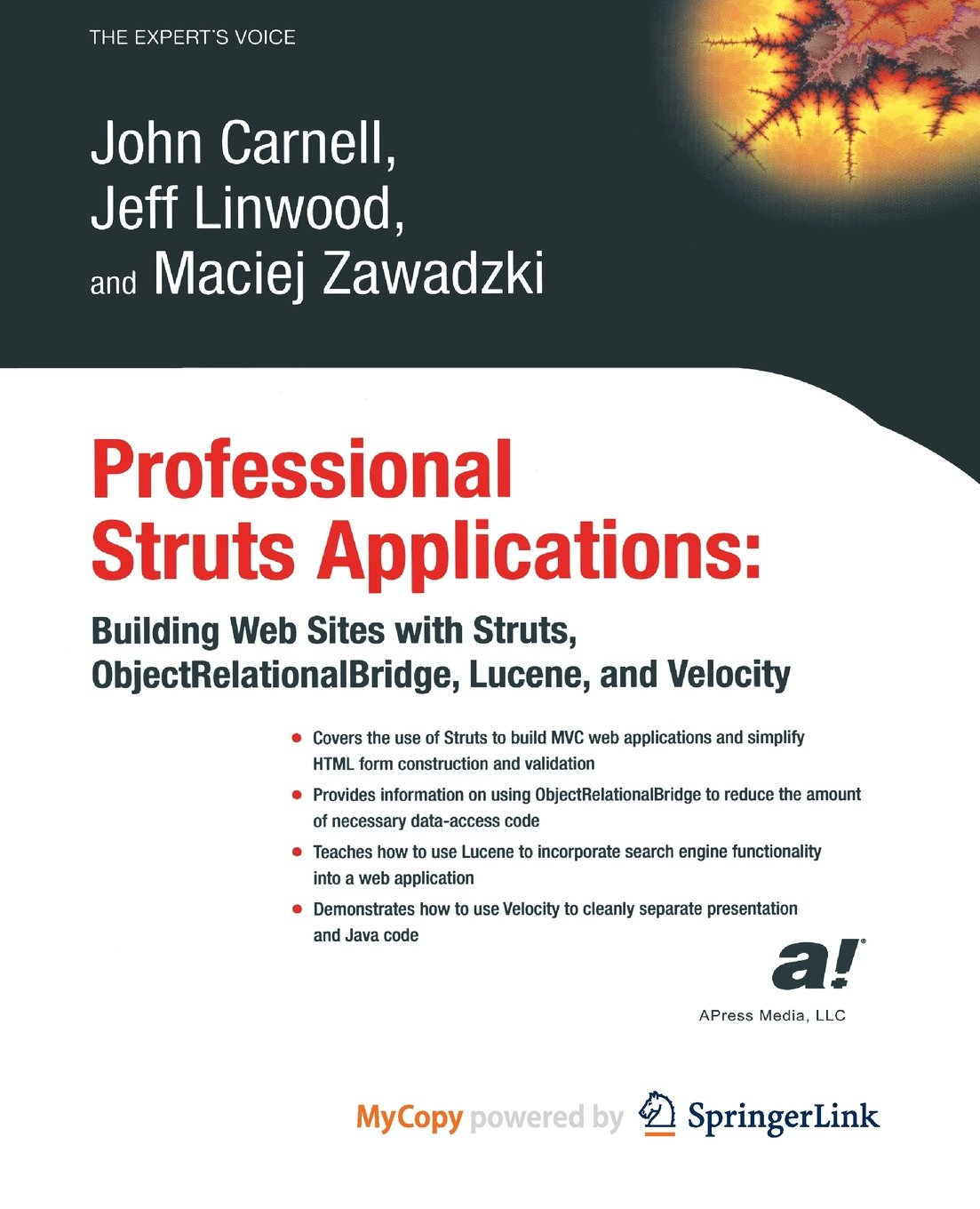Download Professional Struts Applications: Building Web Sites with Struts ObjectRelational Bridge, Lucene, and Velocity ebook