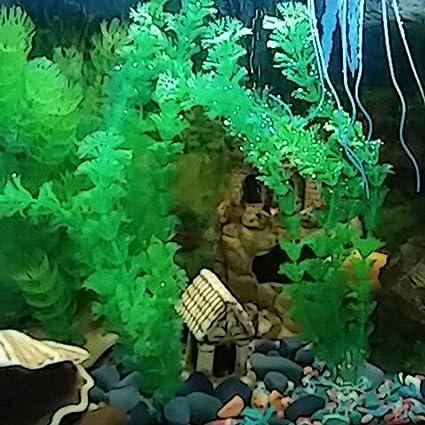 WINNERUS 1 UNID Decoración Para El Hogar Plástico Elegante No tóxico 30 cm Planta Submarina Hierba Artificial para Acuario Tanque de Peces decoración del ...