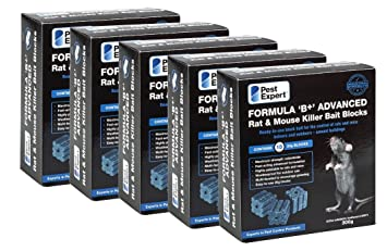 Small Infestation Pest Expert Rat Poison Killer Kit Professional