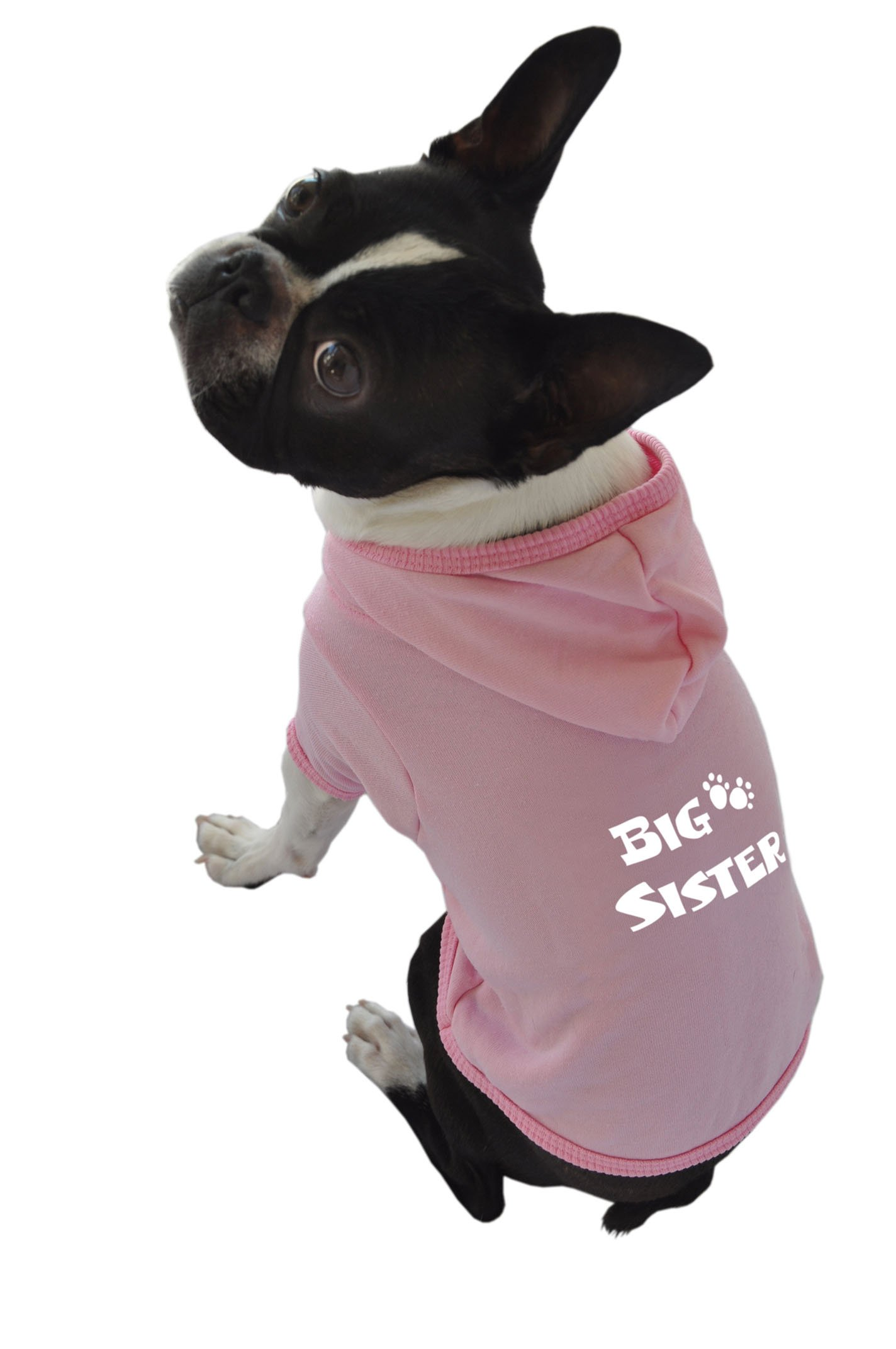 Ruff Ruff and Meow Dog Hoodie, Big Sister, Pink, Extra-Large
