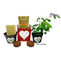 TickleMe Plant Gift Box for Valentine's Day - Share Growing The Only Plant That...