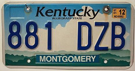USA Nummernschild KENTUCKY ~ US Kennzeichen LICENSE PLATE ~ Bluegrass State Blechschild