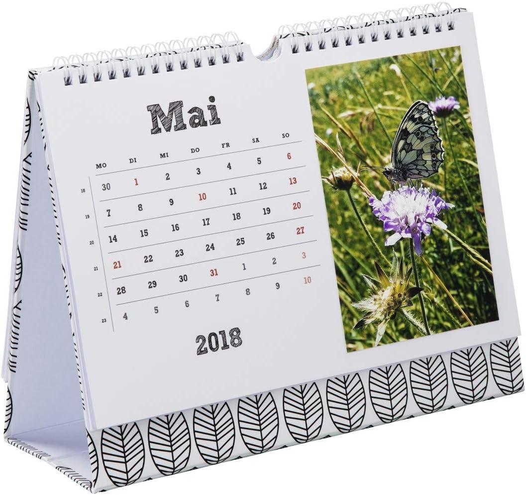 Hama La Fleur mesa calendario – calendarios (270 mm, 220 mm, color blanco): Amazon.es: Oficina y papelería