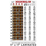 Laminated Mandolin Fretboard and Easy Beginner Chord Chart 11x17 Instructional Poster