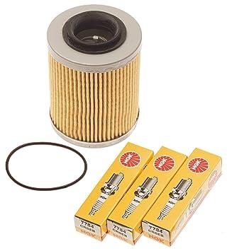 Amazon.com: Mar Doo Spark 900 Filtro de aceite w/Junta ...