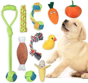 Hond speelgoed vermijden honden verveling angst hond kauwen