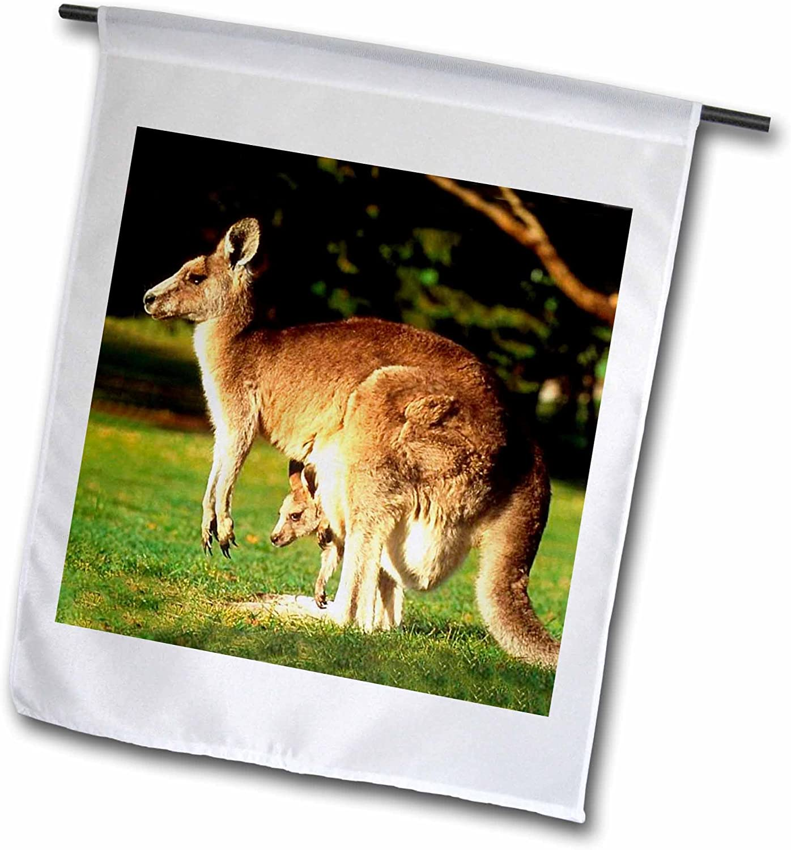 3dRose fl_1109_1 Kangaroo, Garden Flag, 12 by 18-Inch