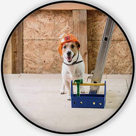 Amazon.com : Dog with Toolbox in Hard hat at Under ...