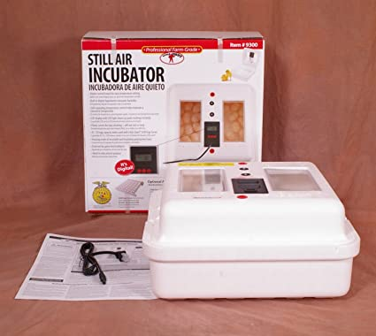 Little Giant Egg Incubator 9300 with Circulated Air Fan