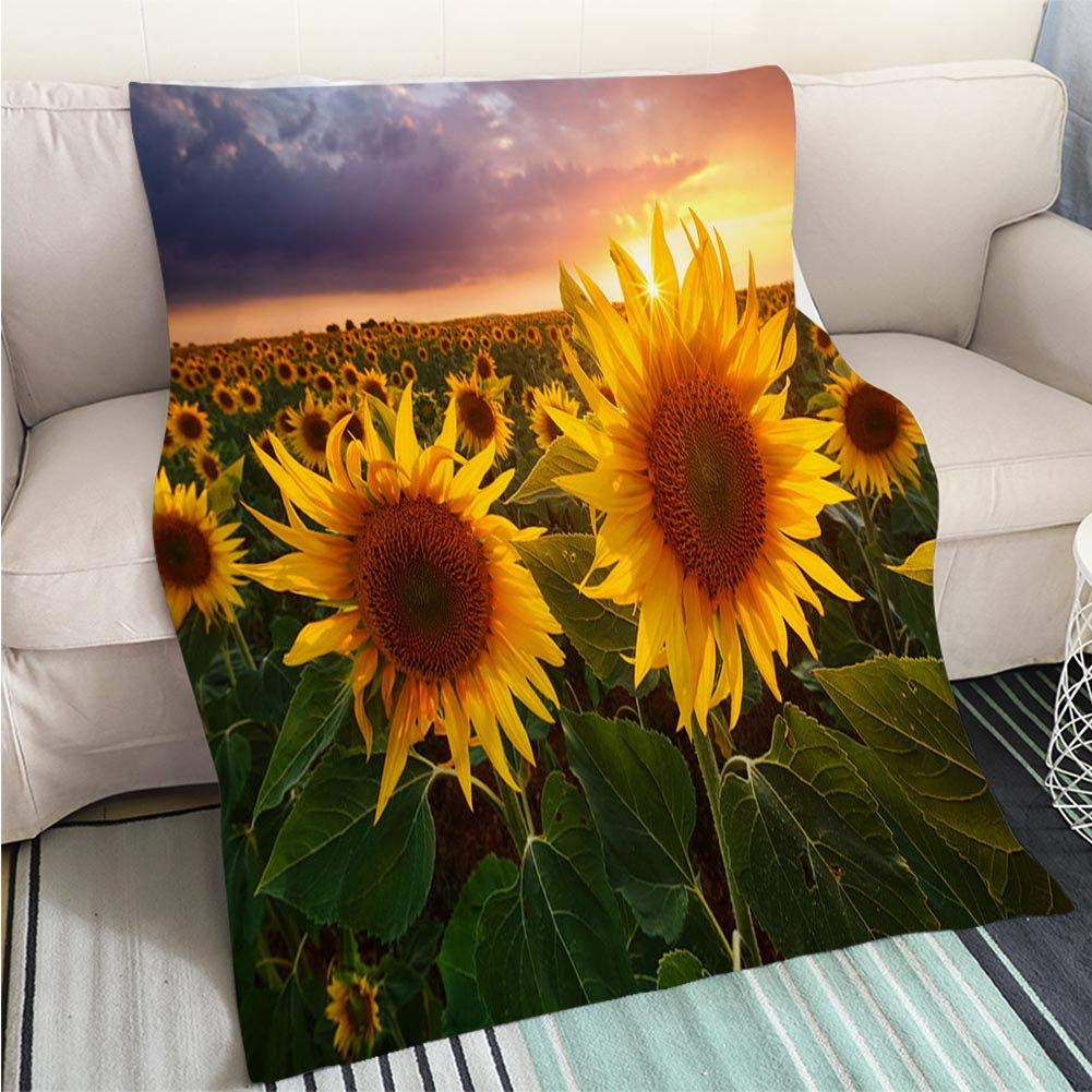 color3 47 x 59in BEICICI Luxury Super Soft Blanket Sunflowers on The Old Wooden Background Space for Text Sofa Bed or Bed 3D Printing Cool Quilt