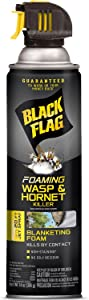 Black Flag Foaming Wasp & Hornet Killer Aerosol Spray, 14-Ounce