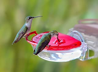 product image for Aspects ASPECTS437 The Gem Window Hummingbird Feeder