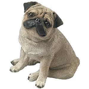 Sandicast Mid Size Fawn Pug Sculpture, Sitting