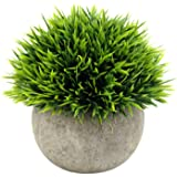 Kaptin Mini Artificial Green Grass of Plants with Grey Pots, Small Fake Decorative Lifelike Faux Greenery for Kitchen…