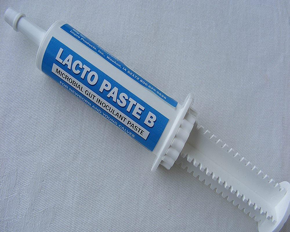 Impro Lacto Paste B Calf Probiotic- 60 Gm Tube by Impro