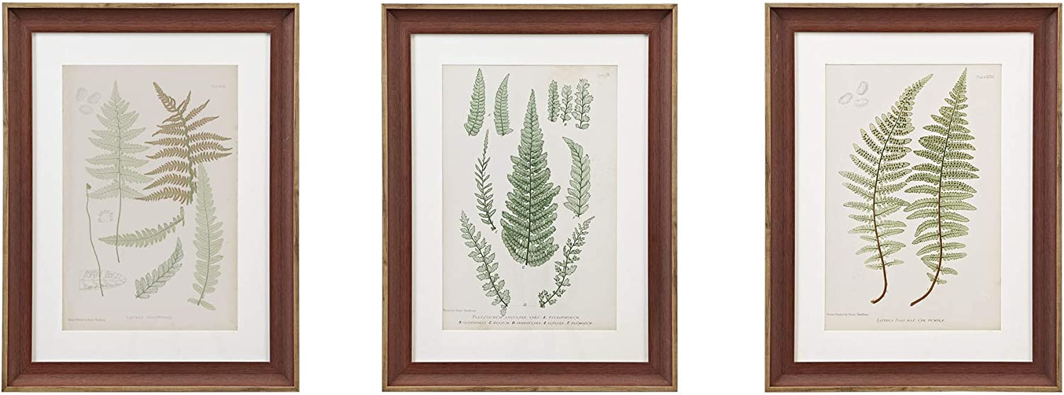 "MARTHA STEWART Lady Fern Collection Wall Art Living Room Framed Linen Canvas Home Accent Country Lifestyle Bathroom Decoration, Ready to Hang Poster Painting for Bedroom, 18.75"" X 24.75"", Green"