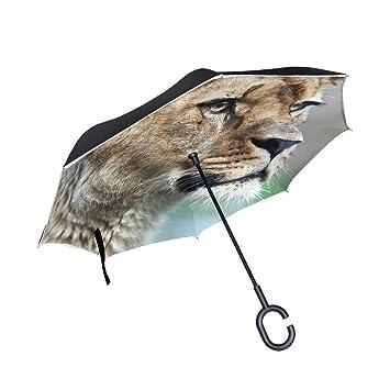 Paraguas Reversible de Doble Capa invertido Majestic Lioness (Panthera Leo) en Naturaleza Plegable Resistente