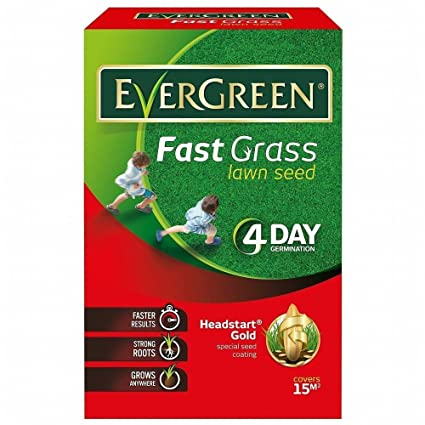 Evergreen Fast Grass Lawn Seed 15m2 Pluss 33% Extra Free 4 Day Germination  600g