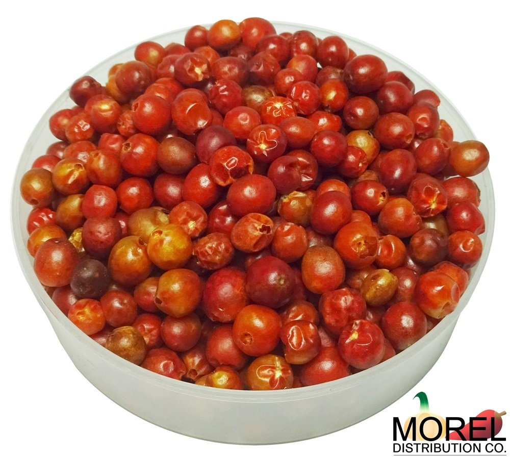 Dried Chiltepin Peppers (Chili Tepin) // Weights: 0.5 Oz, 1 Oz, 2 Oz, 4 Oz!!! (2) by Morel Distribution Company (Image #2)
