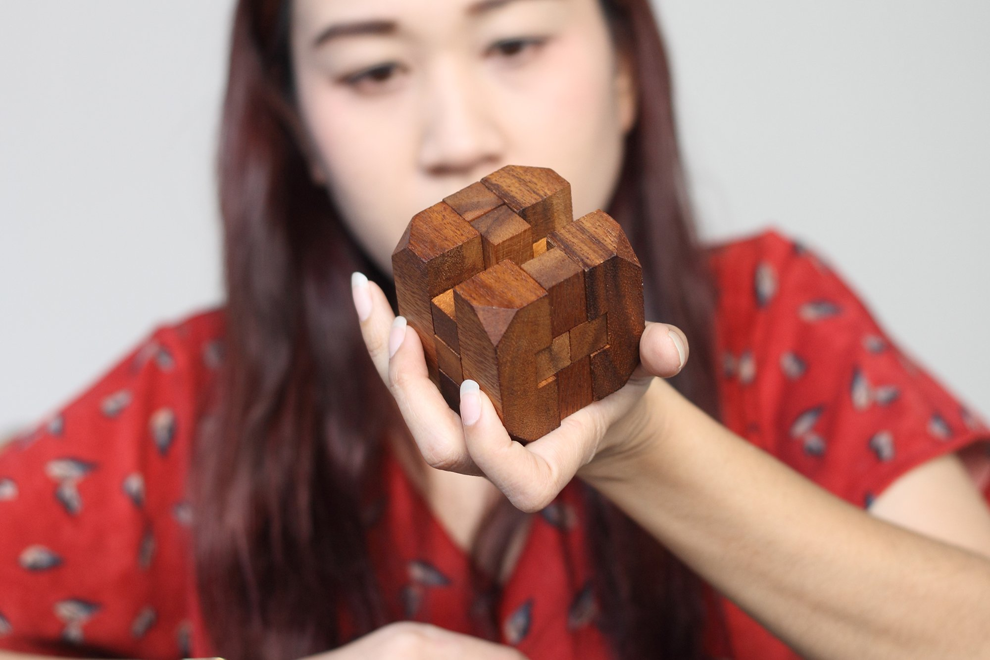 Hidden Passage: Handmade & Organic 3D Brain Teaser Wooden Puzzle for Adults from SiamMandalay with SM Gift Box(Pictured)