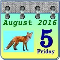 Calendar My Fox