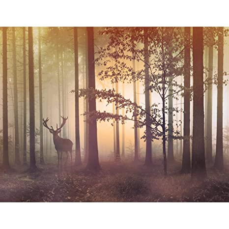 Fototapete Wald Hirsch - Vlies Wand Tapete Wohnzimmer Schlafzimmer Büro  Flur Dekoration Wandbilder XXL Moderne Wanddeko - 100% MADE IN GERMANY - ...