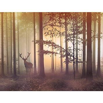 Fototapete Wald Hirsch - Vlies Wand Tapete Wohnzimmer Schlafzimmer ...