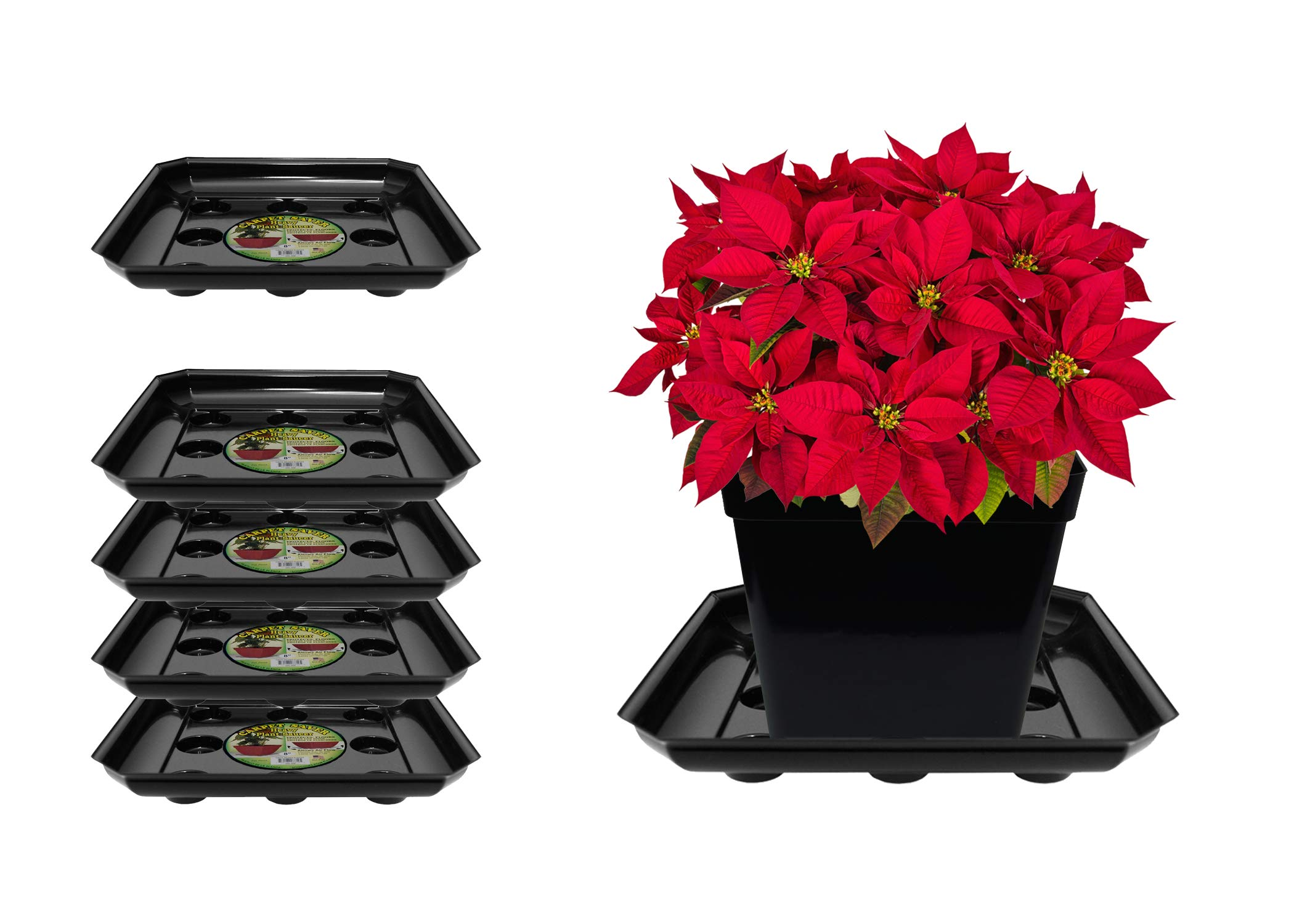Curtis Wagner Plastics SQDS-1600B Carpet Saver Plant Tray Drip Pans (5-Pack) - Black, Square (Diameter = 16'' top, 13.75'' Bottom, 1.62'' Depth) Thick Plastic Indoor & Garden - Clear, Black & Terracotta by Curtis Wagner Plastics Corp.