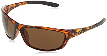 Firefly Chris Sonnenbrille, Mehrfarbig, One Size