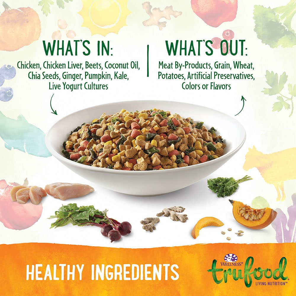 Wellness trufood baked blends natural grain free dry raw dog food wellness trufood baked blends natural grain free dry raw dog food chicken chicken liver flaxseed 18 pound bag pet supplies amazon forumfinder Images