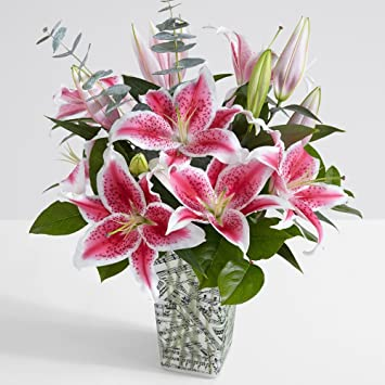 Amazon Proflowers 10 Count Pink Fragrant Stargazer Lilies