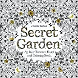 Secret Garden: An Inky Treasure Hunt and Coloring Book