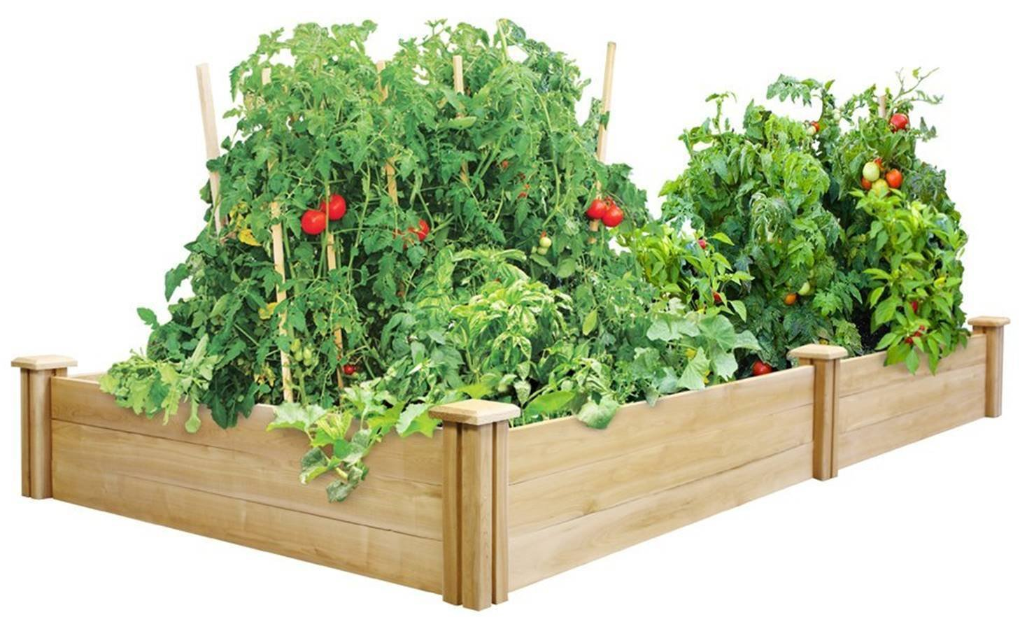 Happy Planter Wood Raised Garden Bed, 4' x 8' x 10.5'' by Happy Planter