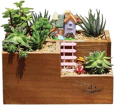 fittoway caja de madera macetero, de flores suculentas maceta contenedor jardín ventana caja con 3 compartimentos: Amazon.es: Jardín