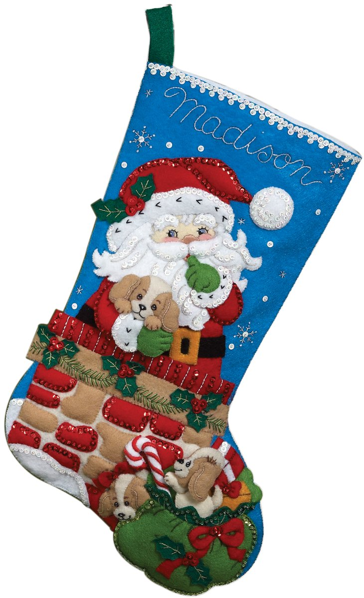 Bucilla 18-Inch Christmas Stocking Felt Applique Kit, 86280 Santa's Secret 86280 Santa's Secret Plaid Inc