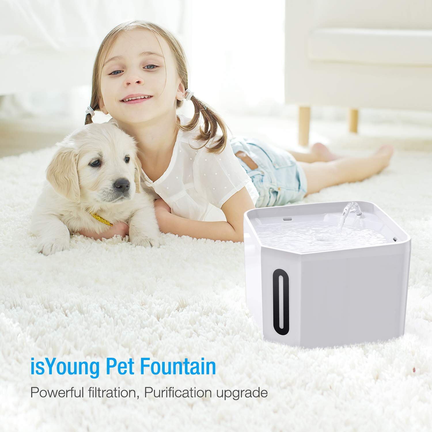 isYoung Pet Fountain, 84oz/2.5L Automatic Cat Water Fountain Dog Water Dispenser for Cats, Dogs, Multiple Pets