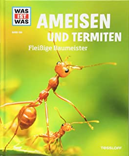 Anthouse Ameisenfarm Starterkit Ameisen Mit Konigin Free Amazon