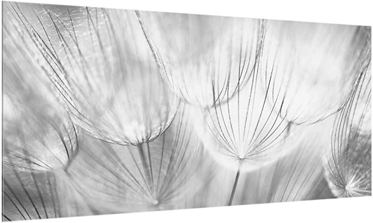 Misura Paraschizzi cucina pannello paraschizzi cucina paraspruzzi per piano cottura pannello per parete cucina Polar White AxL Bilderwelten Paraschizzi in vetro : 40cm x 60cm Orizzontale 2:3