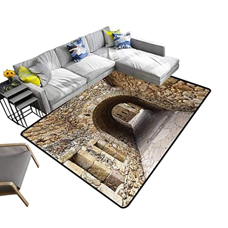 Amazon.com: Polyester Area Rug Mat Medieval Ancient Historic ...